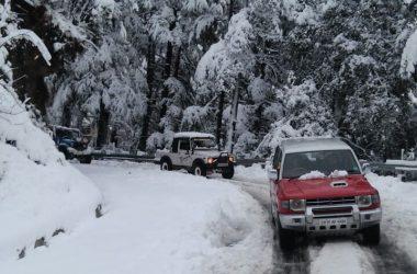 SHIMLA KULLU MANALI CAR TOUR1