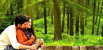 Shimla-Manali-Honeymoon-84